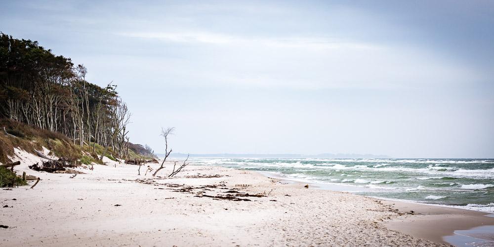 Weststrand und Darss nahe Darßer Ort bei Prerow - Bild: Sebastian Lehmann, L-S-Photographie.de